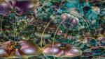 Plankton Dream