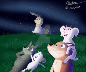 Staring the stars