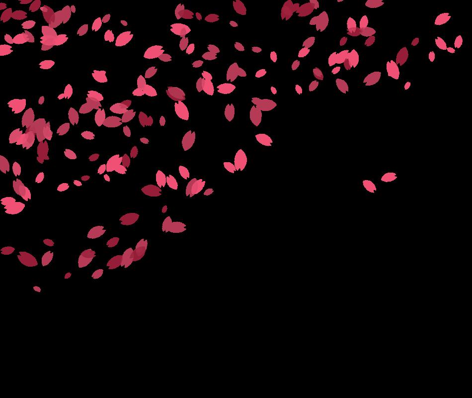 Cherry Blossom Petals by NiuidTheDruid on DeviantArt