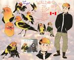 Waldo Reff