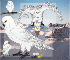 SnowyOwl Reff by Teal0wl