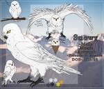 SnowyOwl Reff