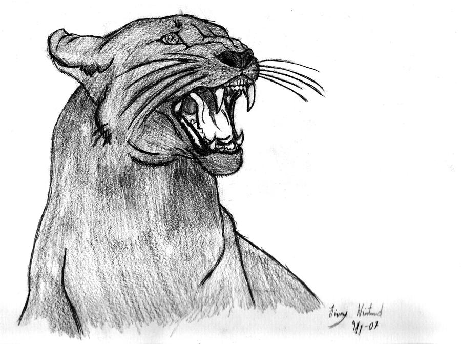 http://fc02.deviantart.net/fs25/i/2008/139/8/9/Panther_by_Jimmpan.jpg