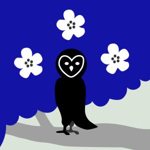 OwlFeatherPhotos's Profile Picture