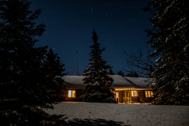 Moonlit Night by OwlFeatherPhotos