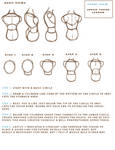 Anatomy Study Guide: Part 1