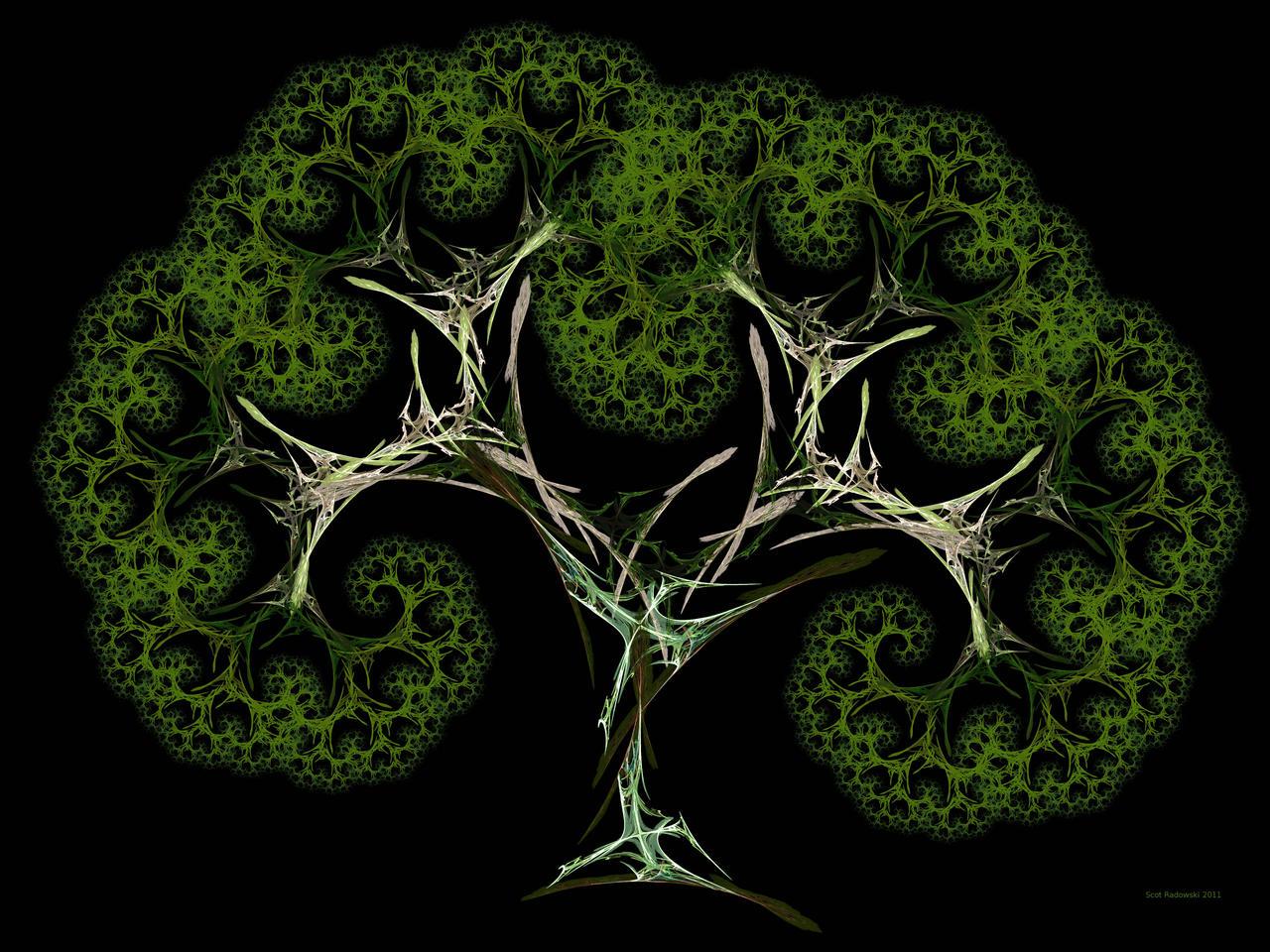 Julian Splits Pythagoras Tree by fractalfiend