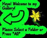 Folder Intro