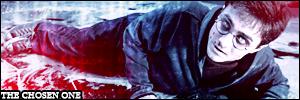 Harry Potter banner by wylie-schatz