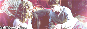 HP HBP banner harry hermione by wylie-schatz