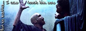HP banner Harry Voldemort by wylie-schatz