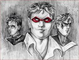 Three Robins by GalacticDustBunnies