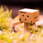 Springtime tenderness by DaniRDA