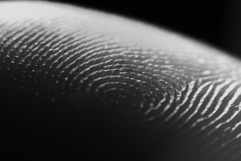 Fingerprints by YannickVALLET