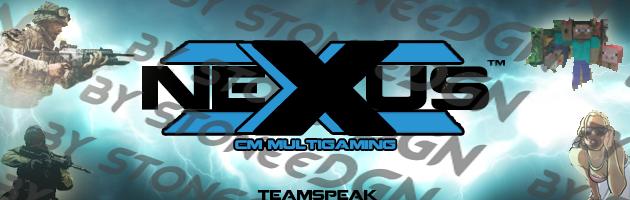 how to make a teamspeak server