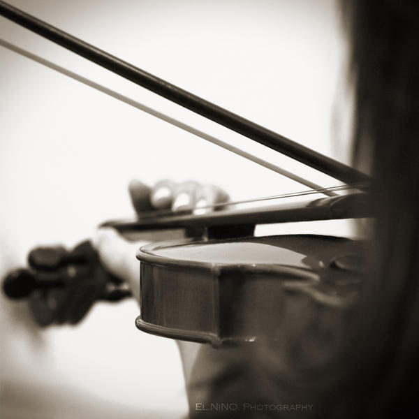 Violin II by Nohition