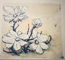 Coffee Flowers (The Sequel) by Miss-Linna