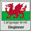 Welsh language level BEGINNER by LarrySFX