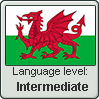 Welsh language level INTERMEDIATE by TheFlagandAnthemGuy