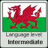 Welsh language level INTERMEDIATE by TheFlagandAnthemGuy