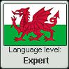 Welsh language level EXPERT by TheFlagandAnthemGuy