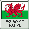Welsh language level NATIVE by animeXcaso