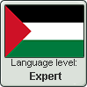 Palestinian Arabic language level EXPERT by TheFlagandAnthemGuy