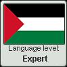 Palestinian Arabic language level EXPERT by animeXcaso