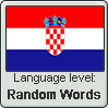 Croatian language level RANDOM WORDS by TheFlagandAnthemGuy