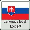 Slovak language level EXPERT