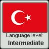 Turkish language level INTERMEDIATE
