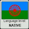 Romani language level NATIVE by TheFlagandAnthemGuy