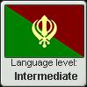 Punjabi language level INTERMEDIATE by TheFlagandAnthemGuy