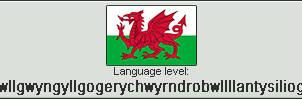 Welsh level Llanfairpwllgwyngyllgogerychwyrndrobwl