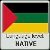 Hijazi Arabic language level NATIVE by TheFlagandAnthemGuy