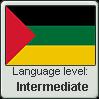 Hijazi Arabic language level INTERMEDIATE by TheFlagandAnthemGuy