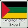 Hijazi Arabic language level EXPERT by TheFlagandAnthemGuy