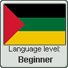 Hijazi Arabic language level BEGINNER by TheFlagandAnthemGuy