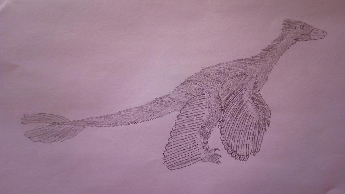 Microraptor by Pootis97