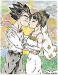 gohan videl's wedding