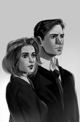 Mulder and Scully by RossoWinch