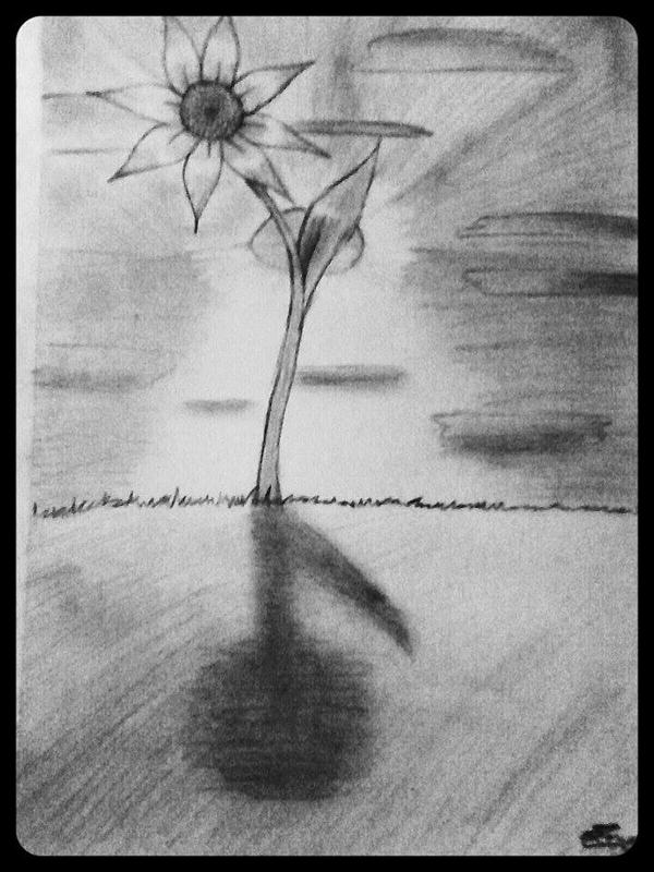 Sunset Flower by 3600LetGo