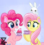 Fluttershy And Pinkie pie Tea time?