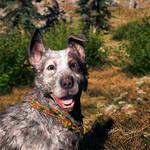 Boomer The Dog - Far Cry 5