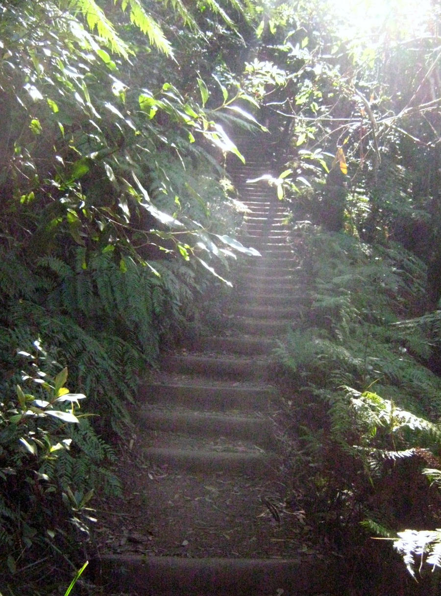 039 stairway to heaven 039 by tonetta quot 4