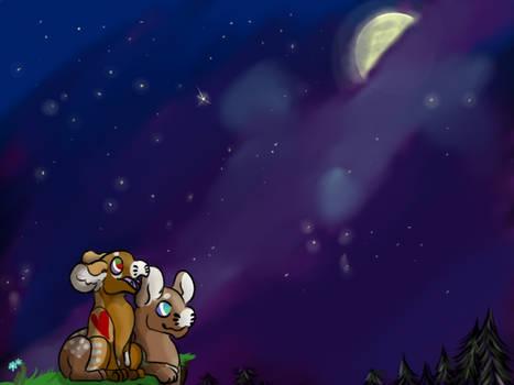 Stargazers Trival quest #6