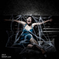 Scream only the spiders will hear by MichaelLeachPhoto