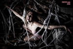 Sateen Dubois Caught in the Spider's Web 9816