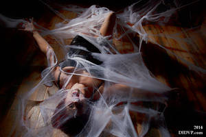 Skyler Grey giant web 4398 by MichaelLeachPhoto