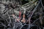 MLP Natalie U Faerie Web Spider Oct21 7186
